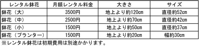 レンタル鉢花価格表