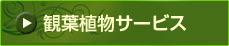 観葉植物サービス