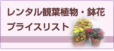 レンタル観葉植物・鉢花プライスリスト